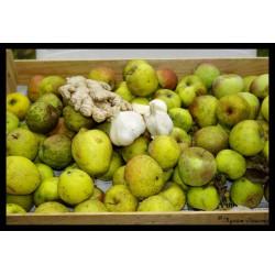 Pomme épicée - Confit